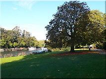 TQ1873 : Buccleugh Gardens, Richmond by Eirian Evans