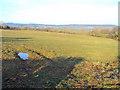 SO4614 : Meadow at Pwll-y-cwm by Trevor Rickard