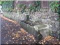 NY9964 : Horse Trough, Spoutwell Lane, Corbridge by Les Hull