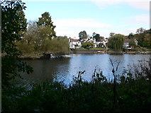 TQ1673 : The Thames at Eel Pie Island by Eirian Evans