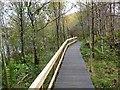 NZ0493 : Boardwalk at the Fontburn Reservoir by Oliver Dixon