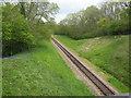 TQ3628 : Bluebell Railway heading north by N Chadwick