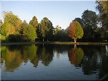 ST8744 : Lake's End by David Roberts