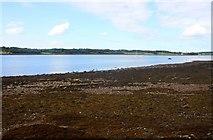 SH5066 : The Menai Strait by Steve Daniels