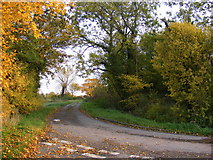 TM3464 : Hill Farm Road, Rendham by Adrian Cable