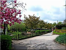 SJ9222 : Victoria Park (3) - General view by P L Chadwick