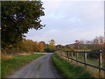 TM3464 : Sandy Lane, Rendham by Adrian Cable