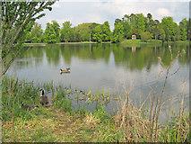 ST9770 : Bowood Lake - 1 by Trevor Rickard