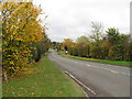 SO9171 : A448 viewed from Woodcote Lane by Alex McGregor