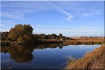 NT4681 : Marl Loch by Colin Kinnear