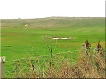 NW9954 : 13th green at Portpatrick Golf Club by Ann Cook
