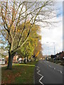 SP0085 : Hagley Road West in Quinton by Gareth James