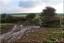 SS5345 : The footpath from the Old Barnstaple Road at Francis Farm by Roger A Smith