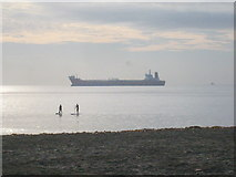 SW8031 : Early morning paddleboarders off Gyllyngvase Beach by Rod Allday