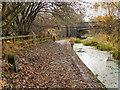 SD7606 : Manchester, Bolton & Bury Canal, Ladyshore by David Dixon