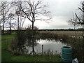 TM2690 : Pond on Airfield Farm, Hardwick by Adrian S Pye