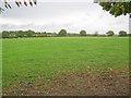 SK6960 : Meadow near Dilliner Wood Farm by Trevor Rickard