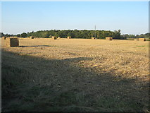 SO8843 : Straw bales in a field at Dunstall by Philip Halling