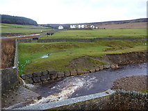 NY9828 : Middle End Farm over Great Eggleshope Beck by Andy Waddington