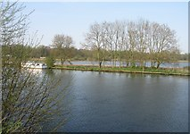 TG2608 : River Yare by Sandy B