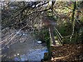 NZ1785 : Footbridge by River Wansbeck by Andrew Curtis