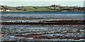 J5070 : Intertidal mudflats, Strangford Lough (2) by Albert Bridge