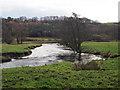 NS9396 : River Devon by Rob Burke