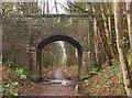 NS9497 : Bridge over disused railway line by Rob Burke