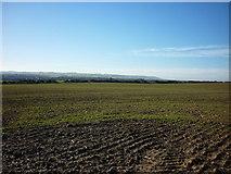 TA1181 : Looking across the fields towards the Wolds by Ian S