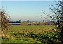 TA0116 : Manor Farm by David Wright