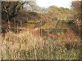 SD7506 : Nob End Locks, Manchester, Bolton & Bury Canal by David Dixon