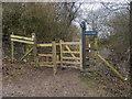 SP9513 : The Ridgeway by Shaun Ferguson