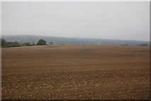 TQ5959 : A very large fallow field by N Chadwick