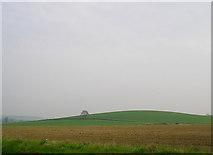 SK9141 : Hambleton Hill, north of Grantham by Stefan Czapski