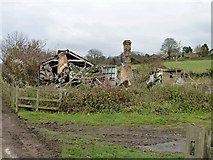 TQ2057 : Ruin in Langley Bottom by Robin Webster
