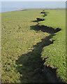 ST5890 : Upper step in saltmarsh, Littleton Warth by Robin Stott