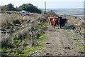 R2273 : Traffic jam near Sheeaun by Graham Horn