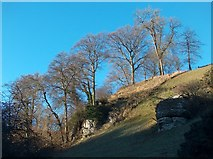 SK2274 : Coombs Dale limestone scenery by Neil Theasby