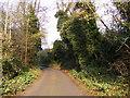 TM3052 : Loudham Lane, Ufford by Geographer