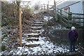 SO8535 : Steps by Josh by Bob Embleton
