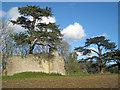 SO8646 : Pirton Castle by Trevor Rickard
