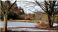 J4774 : Frozen duck ponds, Newtownards (4) by Albert Bridge