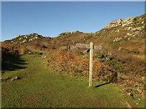 SX7236 : Signpost, Stare Hole by Derek Harper