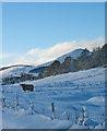 NO0202 : Winter at Middleton Fossoway farm by William Starkey