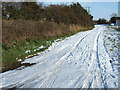 TF4917 : Snow covered track near Walpole St Andrew by Richard Humphrey