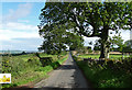 NU0304 : Country road near Cartington (1) by Stephen Richards