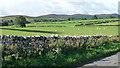 NU0600 : Farmland near Whitton by Stephen Richards
