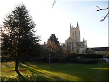 TL8564 : Bury St. Edmunds: the cathedral from the east by Chris Downer