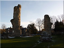 TL8564 : Bury St. Edmunds: part of the abbey ruins by Chris Downer