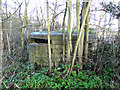 TM5076 : WW1 pillbox at Reydon by Adrian S Pye